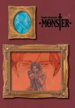Monster: The Perfect Edition, Vol. 9