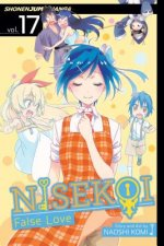 Nisekoi: False Love, Vol. 17