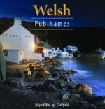Welsh Pub Names