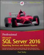 Professional Microsoft SQL Server 2016 Reporting Services and Mobile Dashboards