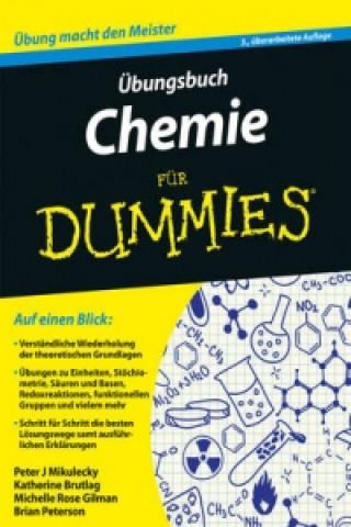 UEbungsbuch Chemie fur Dummies