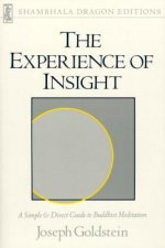 Experience of Insight