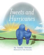 Tweets and Hurricanes