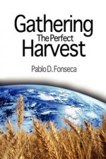 Gathering the Perfect Harvest