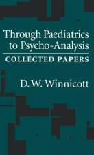 Through Pediatrics to Psycho-Analysis