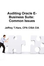 Auditing Oracle E-Business Suite: Common Issues