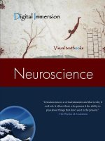 Neuroscience Text