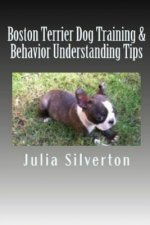 Boston Terrier Dog Training & Behavior Understanding Tips