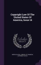 Copyright Law of the United States of America, Issue 14