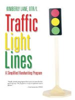 Traffic Light Lines