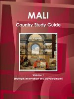 Mali Country Study Guide Volume 1 Strategic Information and Developments