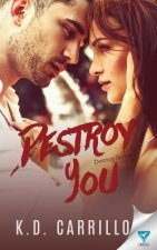 Destroy You