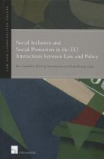 Social Inclusion and Social Protection Interactions Between Law and Policy