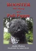 Rooster - The Diary of a Puli Puppy