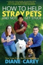How to Help Stray Pets and Not Get Stuck