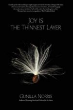Joy Is the Thinnest Layer