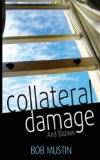 Collateral Damage and Stories