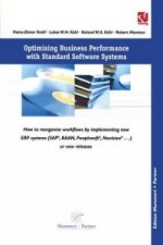 Optimising Business Reporting with Standard Software Systems