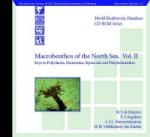 Macrobenthos of the North Sea