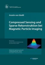 Compressed Sensing Und Sparse Rekonstruktion Bei Magnetic Particle Imaging