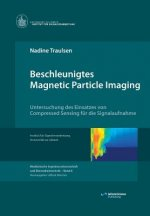 Beschleunigtes Magnetic Particle Imaging