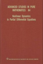 Nonlinear Dynamics in Partial Differential Equations