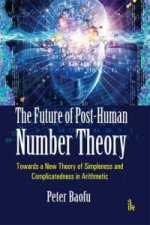 Future of Post-Human Number Theory