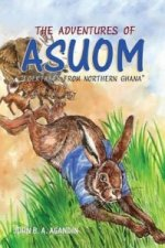 Adventures of Asuom. Folktales from Northern Ghana