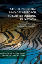 Multi-Industrial Linkages Approach to Cluster Building in East Asia