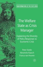 Welfare State as Crisis Manager