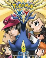 POKEMON XY VOL 8 PA