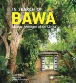 IN SEARCH OF BAWA