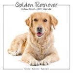 Golden Retriever Studio Calendar 2017