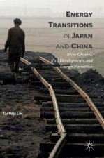 Energy Transitions in Japan and China
