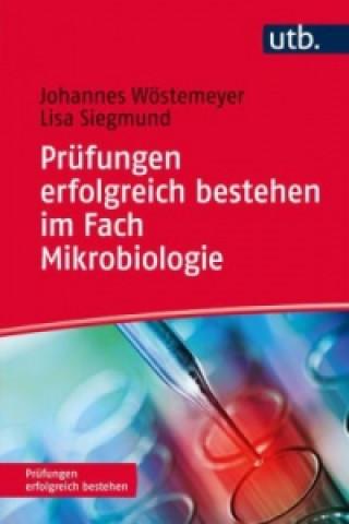 Prüfungen erfolgreich bestehen im Fach Mikrobiologie