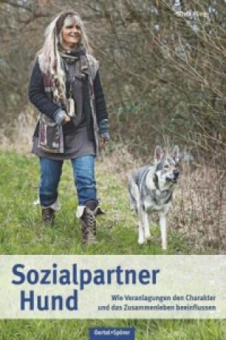 Sozialpartner Hund