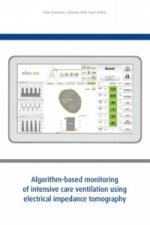 Algorithm-based monitoring of intensive care ventilation using electrical impedance tomography