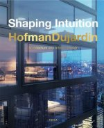 Shaping Intuition