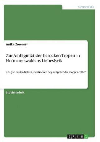 Zur Ambiguitat der barocken Tropen in Hofmannswaldaus Liebeslyrik