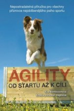 Agility - Od startu až k cíli