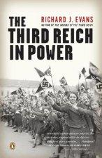 The Third Reich in Power