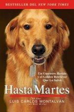 Hasta Martes / Until Tuesday