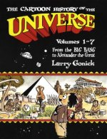 The Cartoon History of the Universe 1