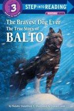 Step into Reading Bravest Dog Ever