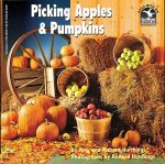Picking Apples & Pumpkins