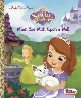 When You Wish upon a Well