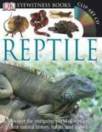 Eyewitness Reptile