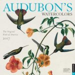 Audubon's Watercolors 2017 Calendar