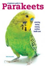A Beginners Guide to Parakeets