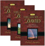 Treasury of David Classic Reflections On The Wisdom Of The Psalms
